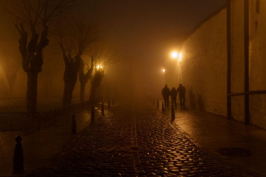 Paseos en la niebla
