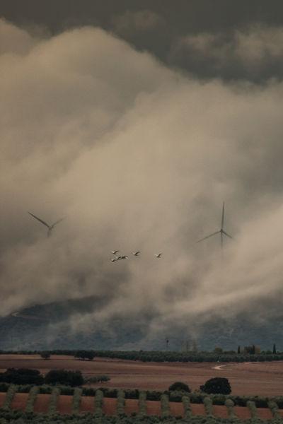 Gigantes entre nubes