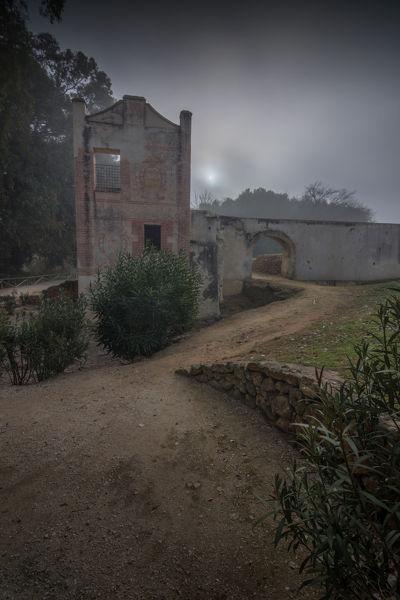 Neblina en el molino de La Tapada