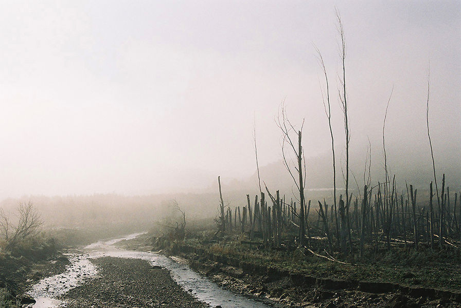 """""""Niebla"""""""