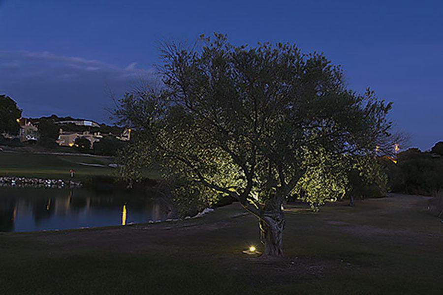 Noche en Montecastillo