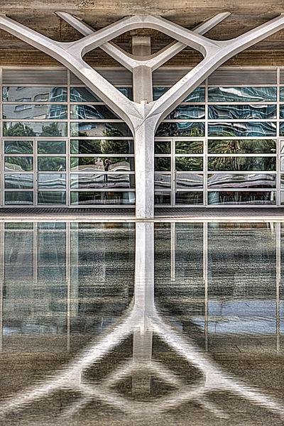 Simetría reflejada