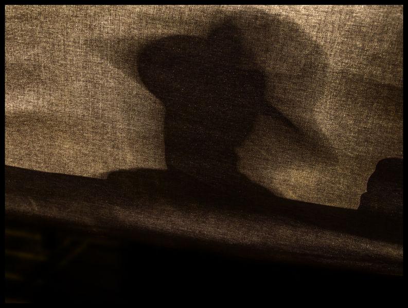Su sombra