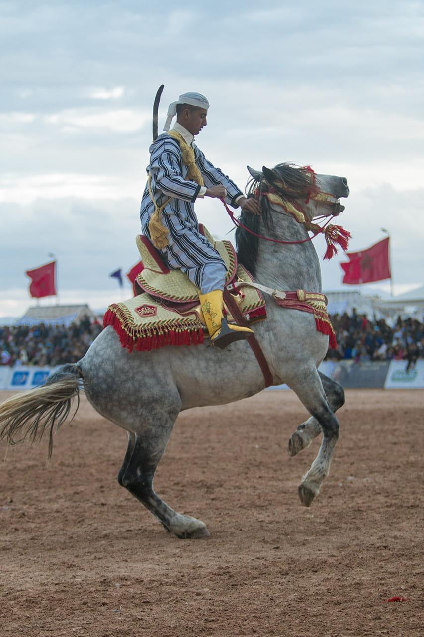 Gran Festival