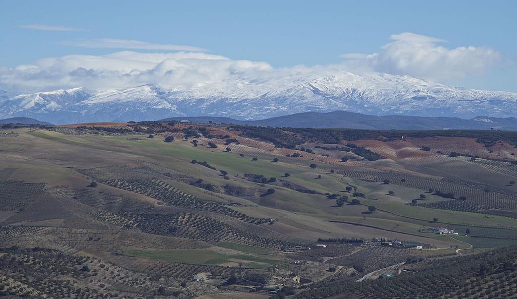 Valle de Lecrin