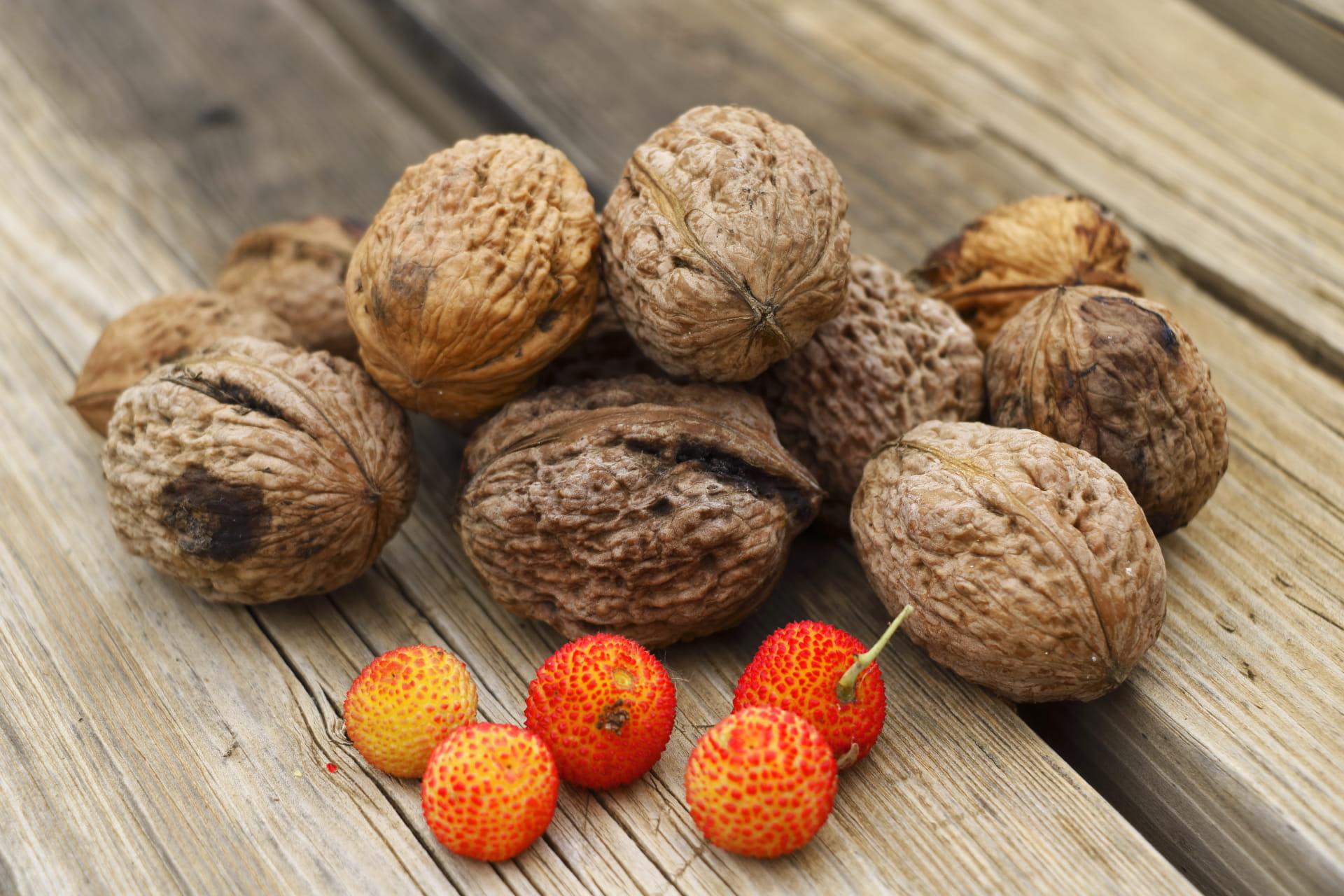 Frutos de otoño.
