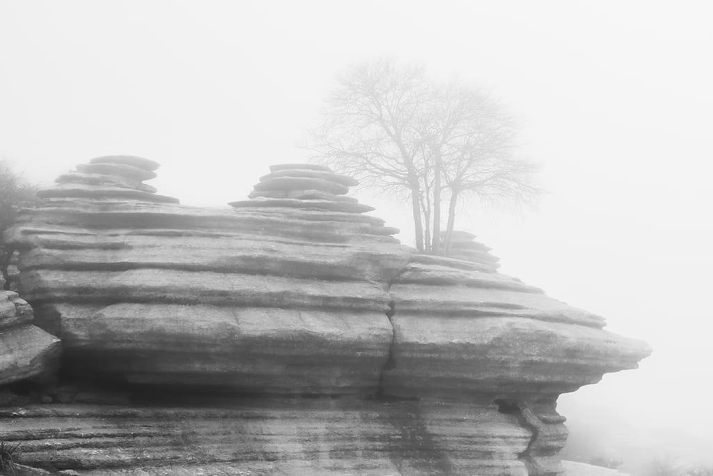 Navegando por la niebla