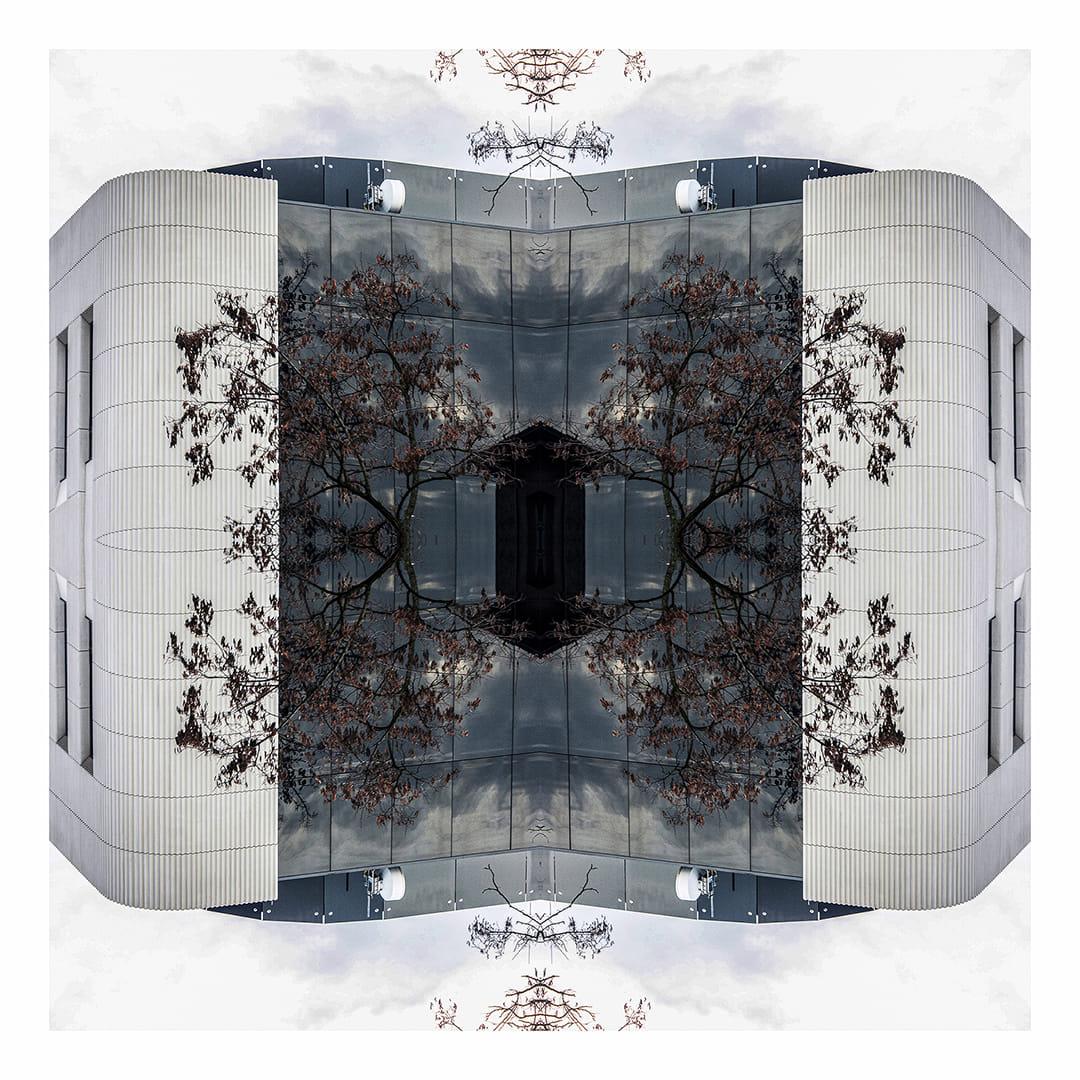 Simetrias de Claros y Azules
