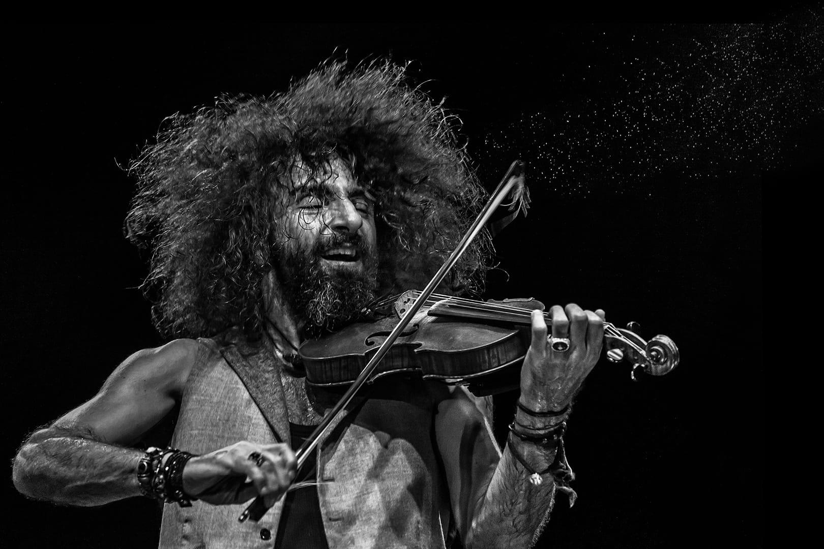 Pasión por el violín