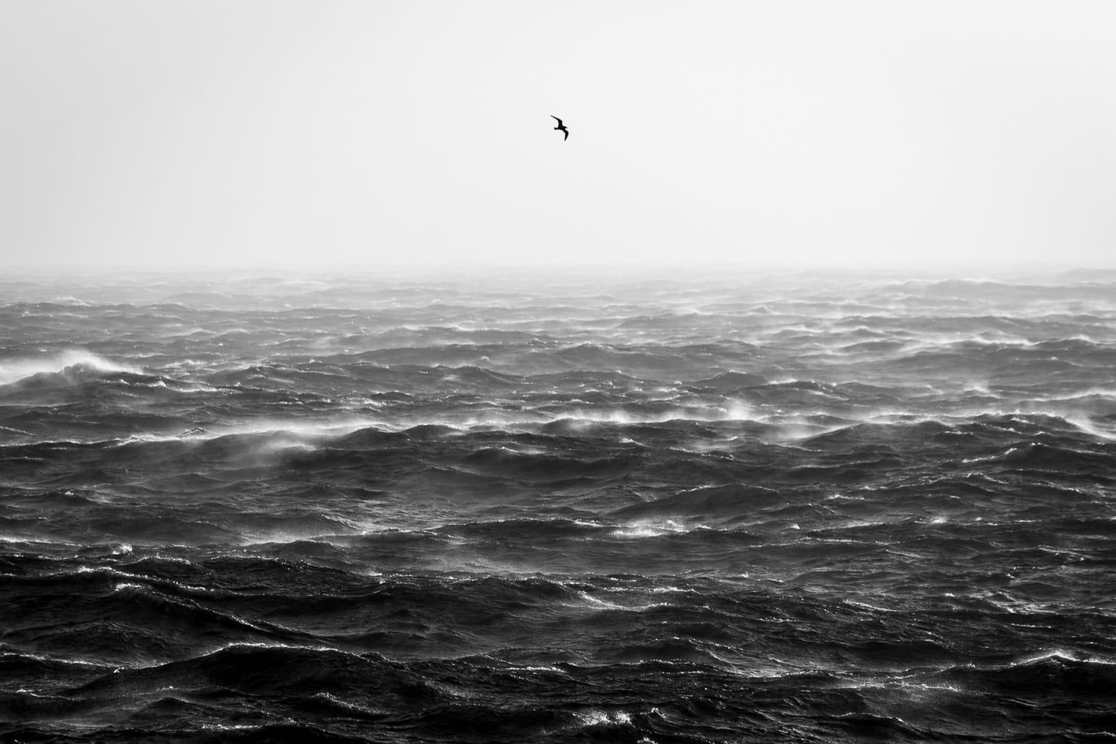 Perdida en la tormenta