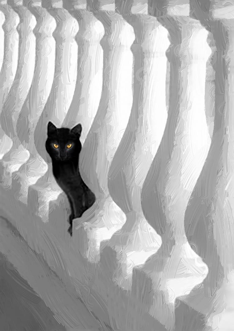 Blanco sobre negro