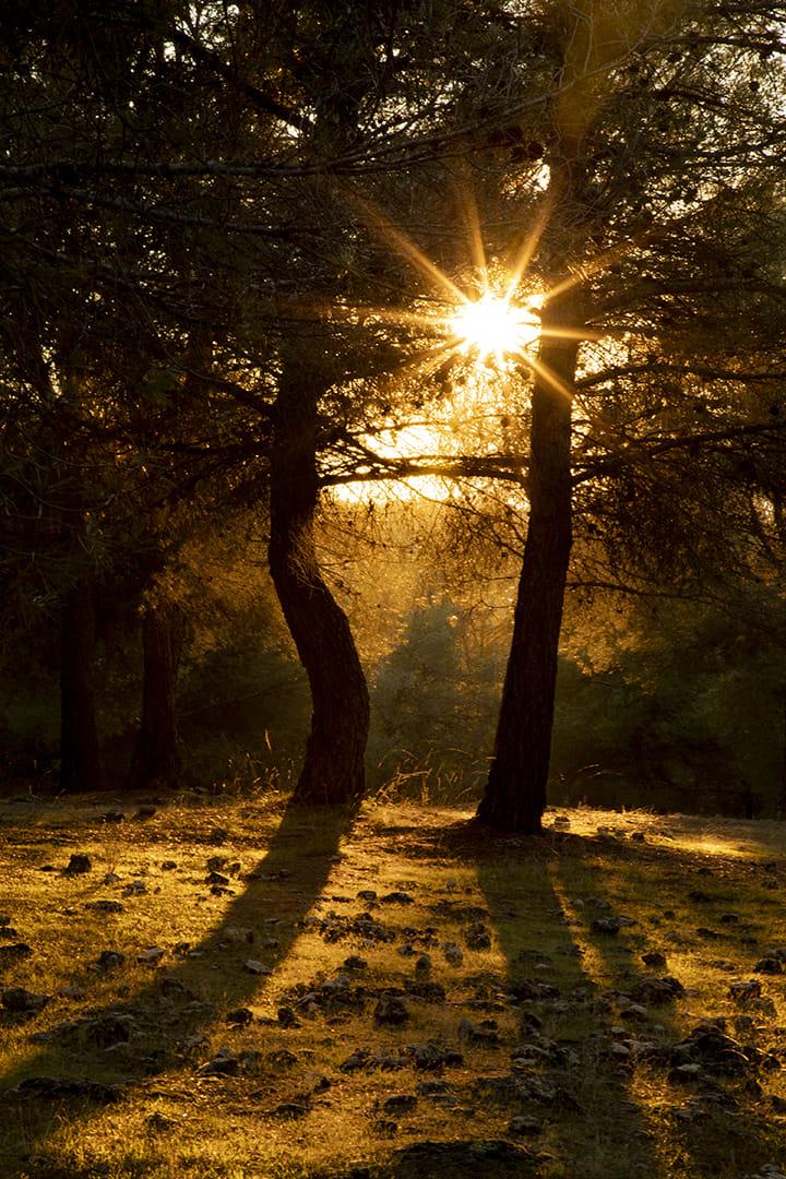 Tiempos de luces y sombras