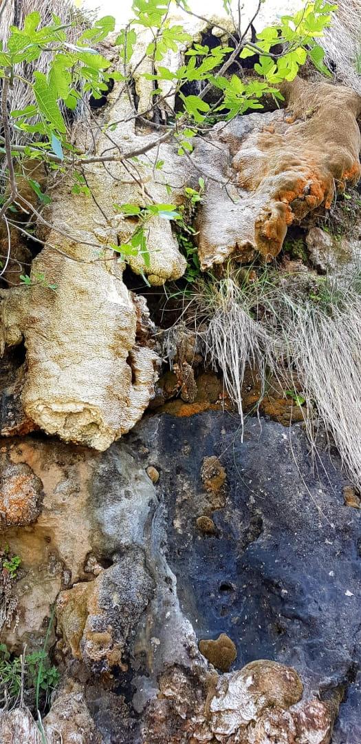 Tonos de piedra