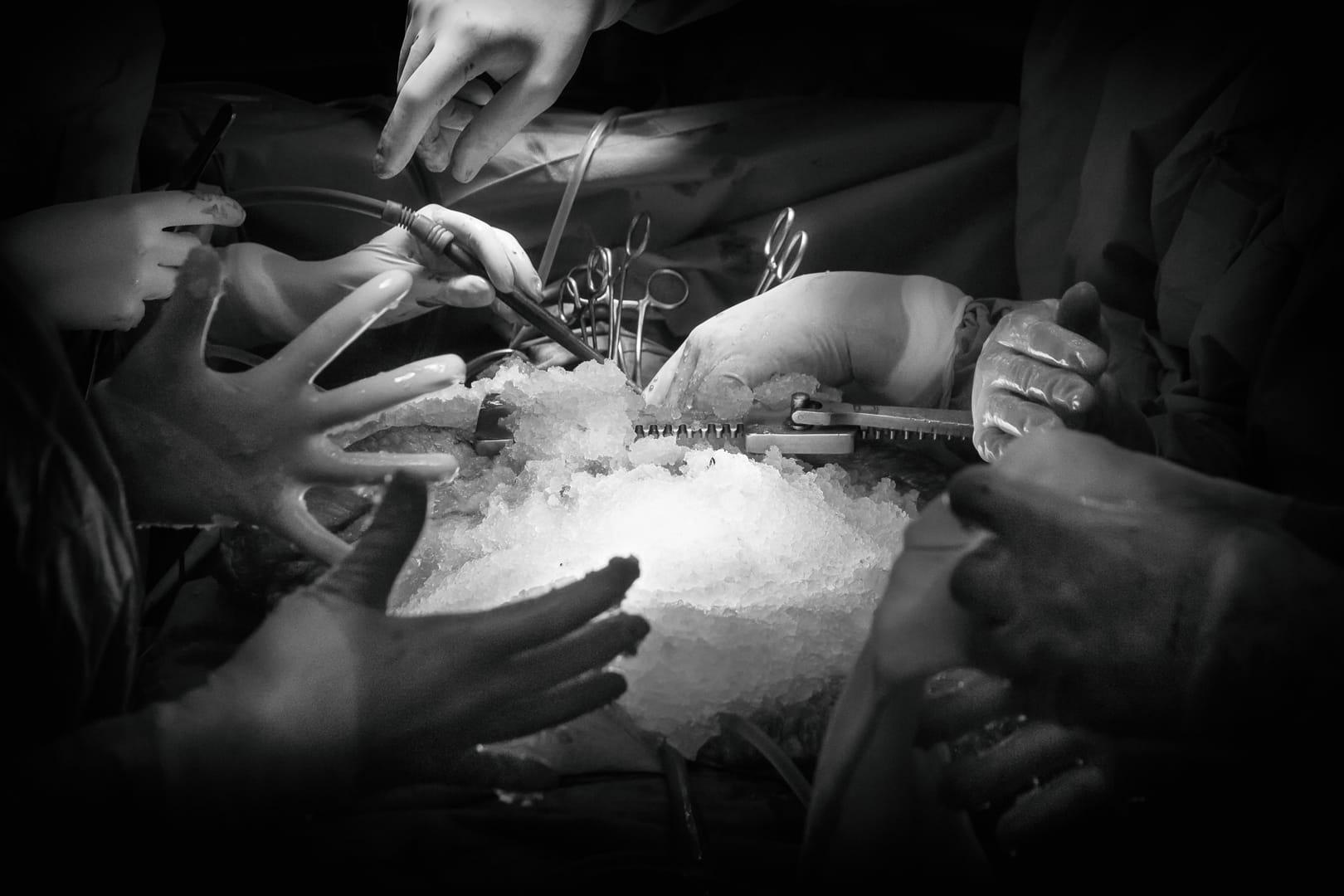 Orquesta de manos