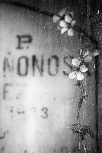 Entre el olvido y la memoria 3