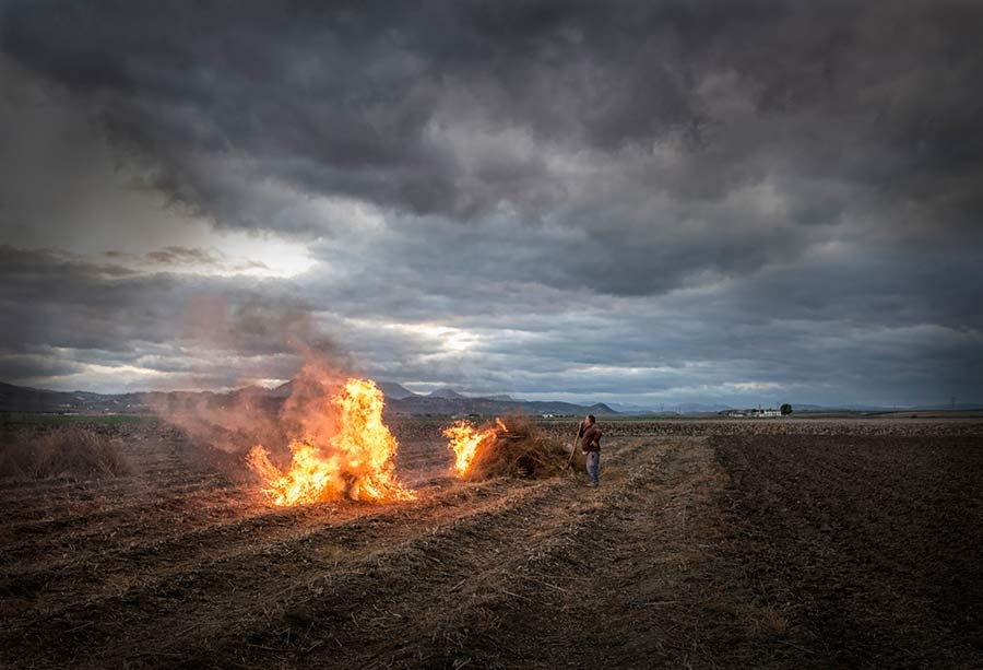 Tierra, fuego, aire y agua