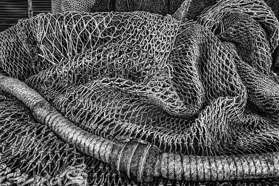 Las redes del Puerto