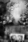 Entre el olvido y la memoria 5