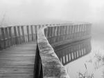 Al filo de la niebla
