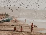 La playa de la vida