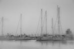 Niebla en el puerto