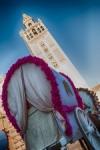 El Rocío por Sevilla