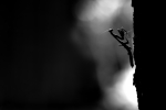 Black Mantis