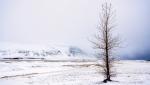 Paisaje Islandes