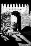 Puerta de Almodóvar