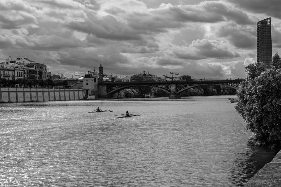 Flechas fluviales
