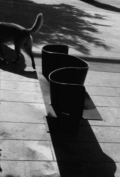 El paseo de las sombras III