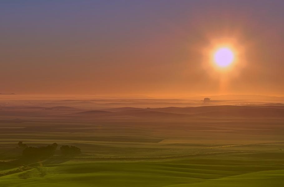 Amanecer neblinoso
