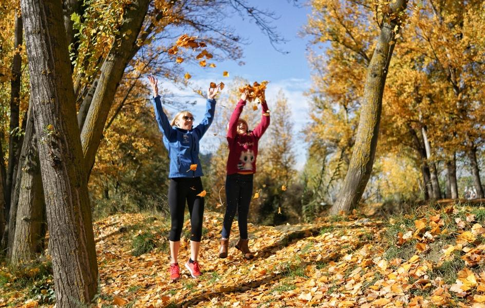 La alegría del otoño