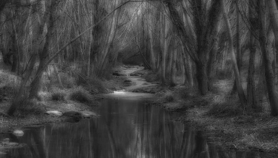 Relajación en el rio