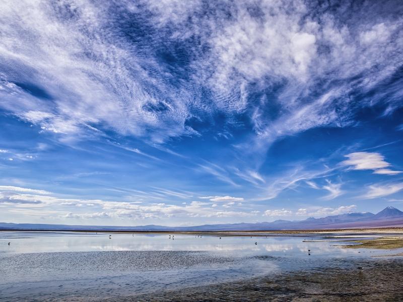 Laguna en Atacama