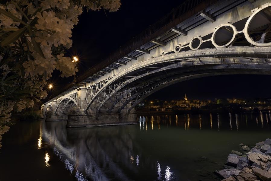 El puente de Isabel II