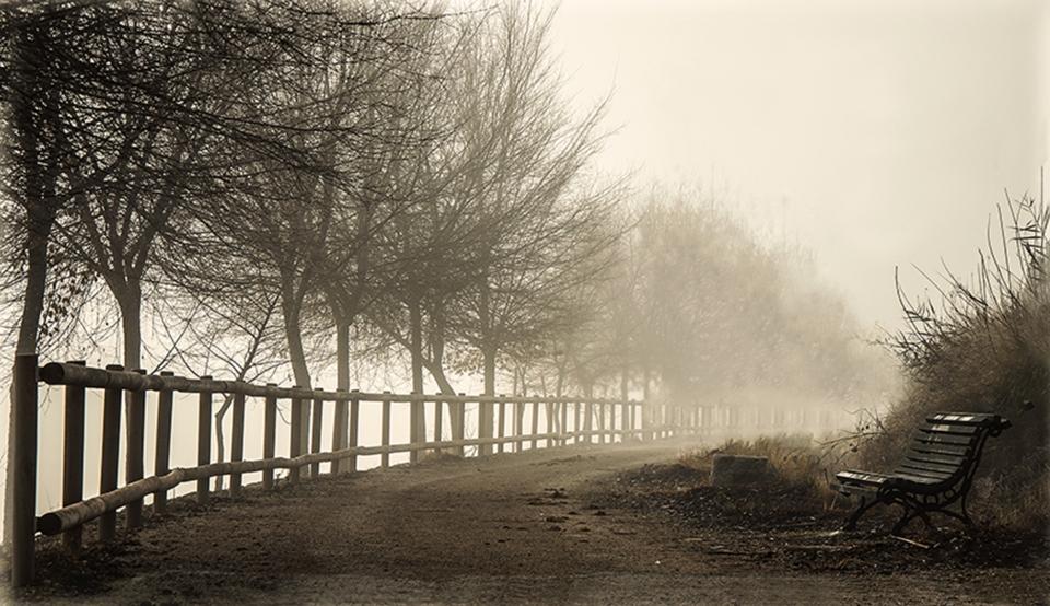 Nieblas en la Ribera