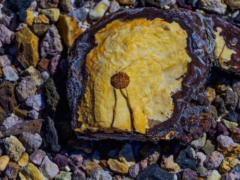 Tortilla a la Piedra